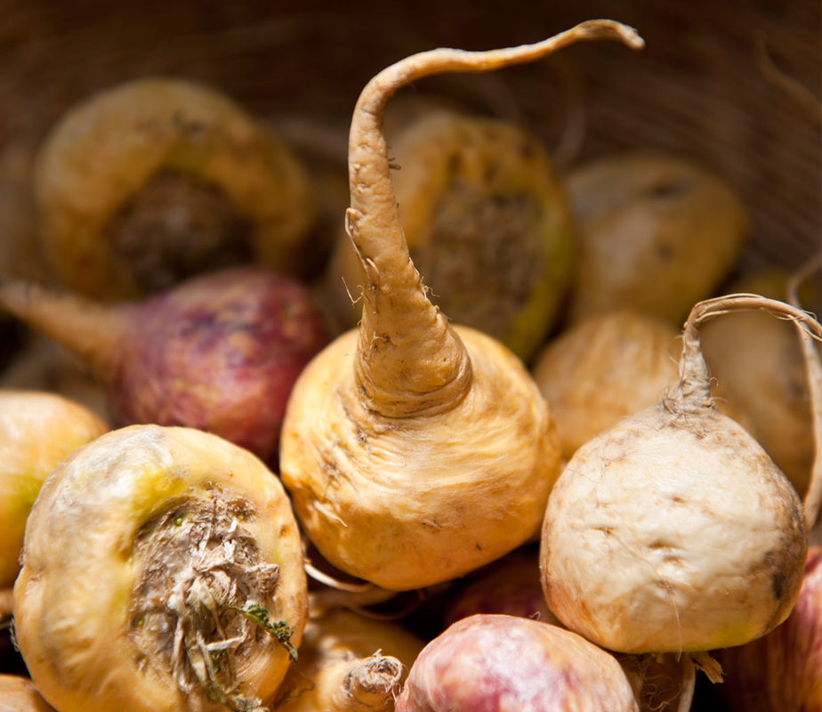 Maca root for sexual enhancement